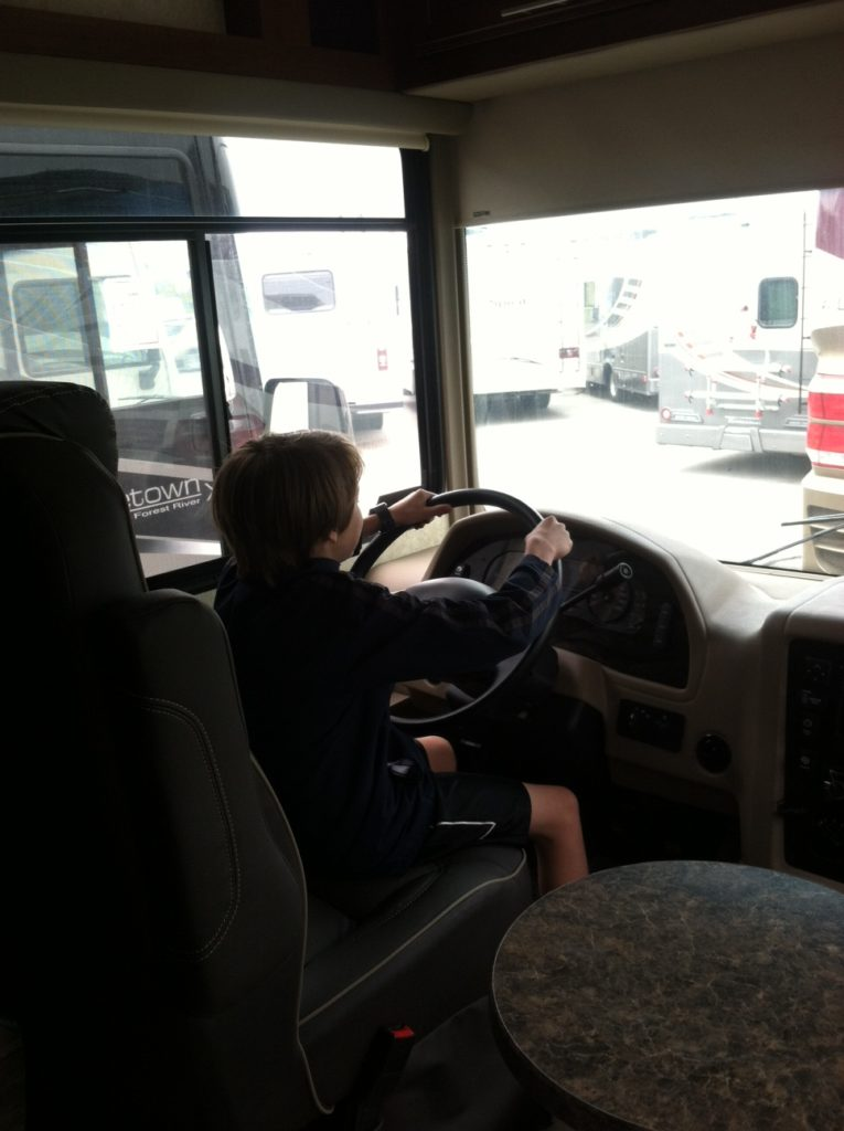 gap year bus driver
